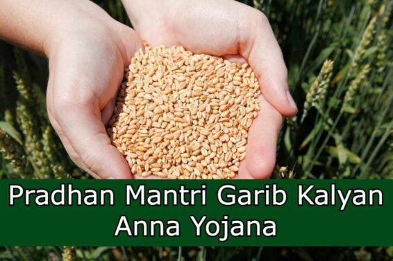 Pradhan-Mantri-Garib-Kalyan-Anna-Yojana-1623332082863