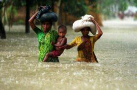 Revoi_Bangladesh